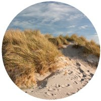 Dune grass and footprints in the sand